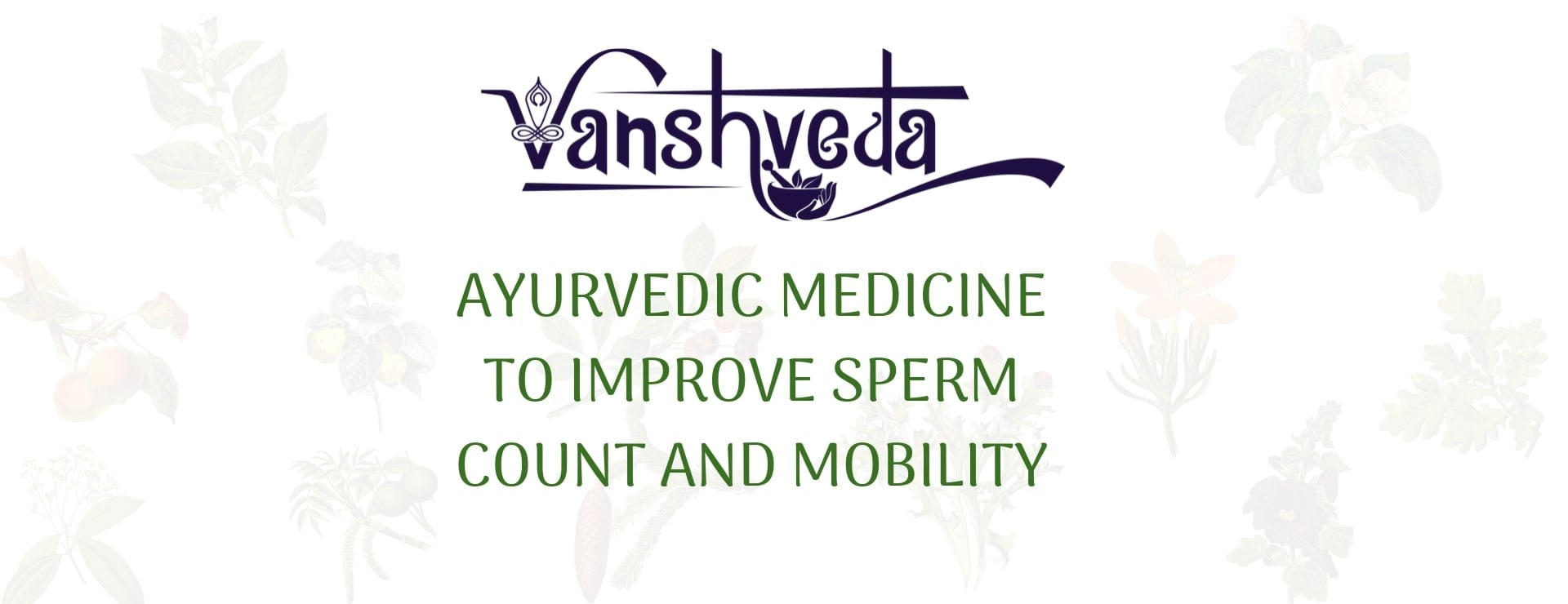 Ayurvedic Medicine to Improve Sperm Count and Mobility